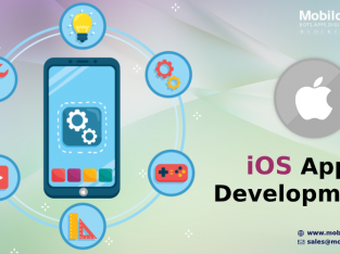 Ios app development in the USA
