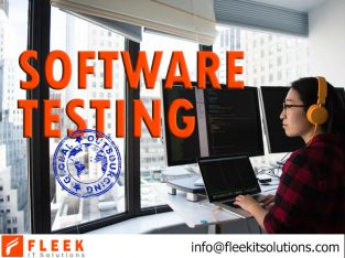 We are Software Testing Company
