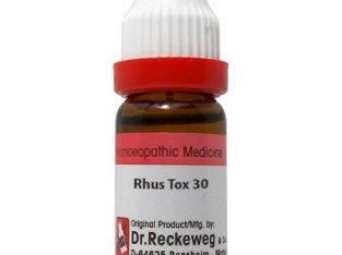 Buy Dr. Reckeweg Rhus Toxicodendron 30 CH (11ml) 2