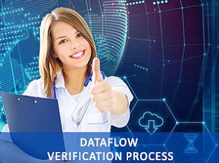 DataFlow Verification Process