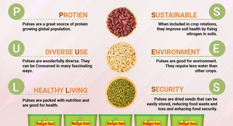 Best pulses company in Delhi-India