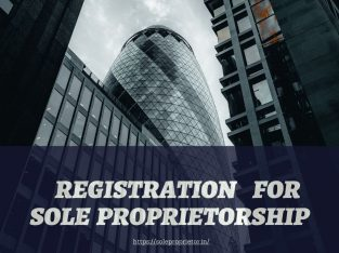 Service of udyam registration for sole proprietor