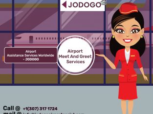 Airport Luggage Handling – Meet and Greet Services