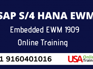 SAP EWM Online Training by USAOnlineTrainings